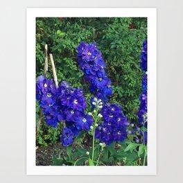 floral mirage Art Print