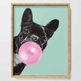 Bubble Gum Sneaky French Bulldog in Green Serving Tray
