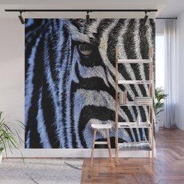Zebra head portrait Wall Mural