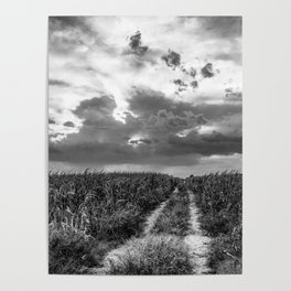 Road to Nowhere - Path in Cornfield Leads to Big Nebraska Sky in Black and White Poster