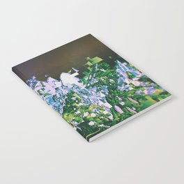 DHQ87 Notebook