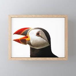 Wild Animal Puffin Penguin Bird Wild Life Potrait Framed Mini Art Print