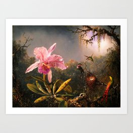 Martin Johnson Heade Cattleya Orchid and Three Brazilian Hummingbirds Art Print