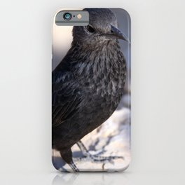 Tristram Starling Masada iPhone Case