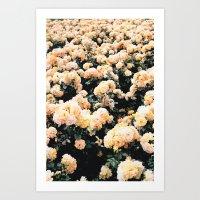 vienna Art Prints featuring Vienna by Bailey Friedman