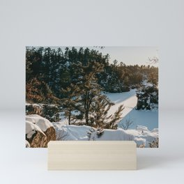 Interstate Park WI   Nature and Landscape Photography Mini Art Print