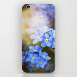 Don't Forget Me no.3863 iPhone Skin
