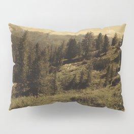 Intervention 15 Pillow Sham