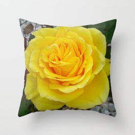 Head On View Of A Yellow Rose With Garden Background Throw Pillow