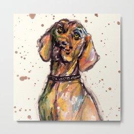 Hungarian Vizsla Dog Closeup Metal Print