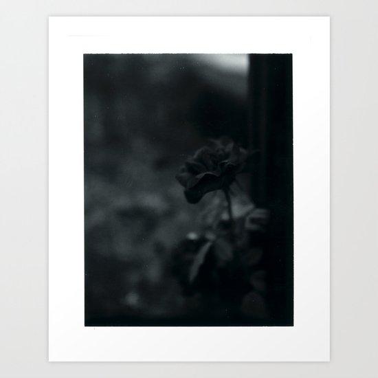Colorless Beauty Art Print