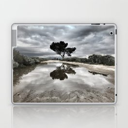 Potrero Creek Laptop & iPad Skin