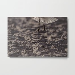 Fly Away -- Low angle view in smoky sepia Metal Print