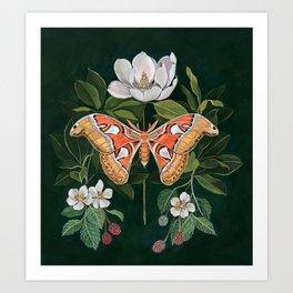 Atlas Moth Magnolia Art Print