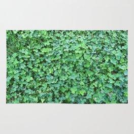 Green Clovers Nature Photo #GaneneKPhotogaphy #StPatricksDay Rug