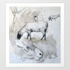 Sheep Sketch #1 Art Print