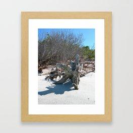 Beach & Sand Framed Art Print