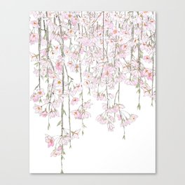 pink cherry blossom spring 2018 Canvas Print