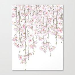 pink cherry blossom spring 2018 Canvas Print
