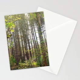 Woods Nature Stationery Cards