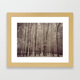 Indiana Winter Framed Art Print