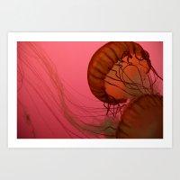 Pink Jelly Art Print