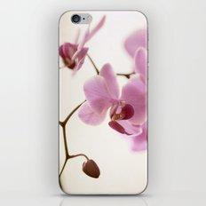 Seraphina iPhone & iPod Skin