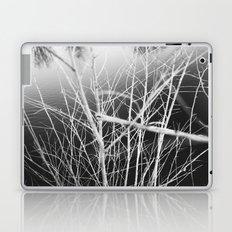 Look Closer Laptop & iPad Skin
