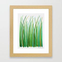 Green Grasses Framed Art Print