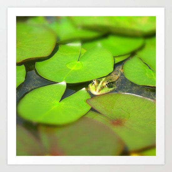 green frog I Art Print