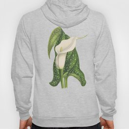 Vintage Flower Calla Lily with Green Leaves Closeup Hoody