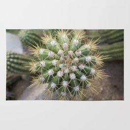 Cactus Closeup Rug