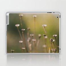 Subtleness Laptop & iPad Skin