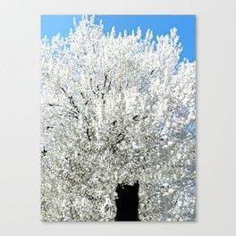 Trees Snow White Canvas Print