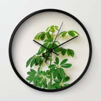 plant Wall Clocks featuring Plant by sakinarawr