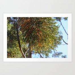 Treesplosion Art Print