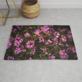 Trailing Lantana Flower Printable Wall Art | Floral Plant Botanical Nature Outdoors Macro Photography Print Rug