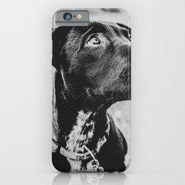 Wheatfield Dog Portrait // Sharing Memories with A Best Friend Such Amazing Eyes iPhone Case