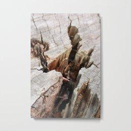 Cracks Metal Print