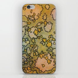 Baja iPhone Skin