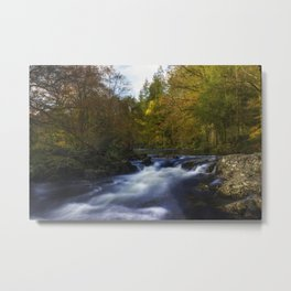 Autumn Forest River Metal Print