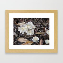 Garden Mushrooms Framed Art Print