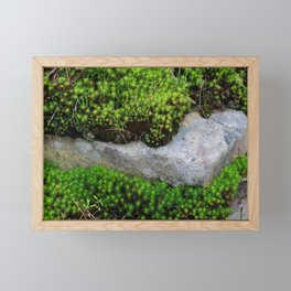 Vibrant Moss Framed Mini Art Print