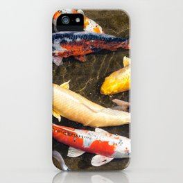 Diverse school of Japanese Koi fish swim together in pond iPhone Case