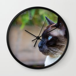 Portrait of a Siamese Cat Wall Clock