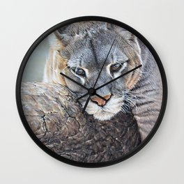 Just Chillin - Cougar Painting by Alan M Hunt Wall Clock