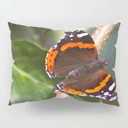 Admiral On The Apple Tree Branch #decor #society6 Pillow Sham