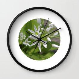 bear´s garlic bloom II Wall Clock