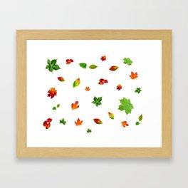 Colorul autumn leaves Framed Art Print