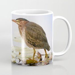 Crowned Night-Heron- Hammond pond Coffee Mug